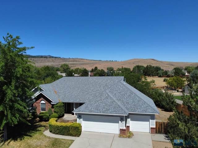 355 Old Washoe Cir, Washoe Valley, NV 89704 (MLS #210011625) :: Chase International Real Estate