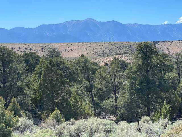 TBD China Springs (East Lot), Gardnerville, NV 89410 (MLS #210012536) :: Colley Goode Group- CG Realty