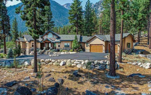 201 Stony Creek Road, Gardnerville, NV 89460 (MLS #210012596) :: NVGemme Real Estate