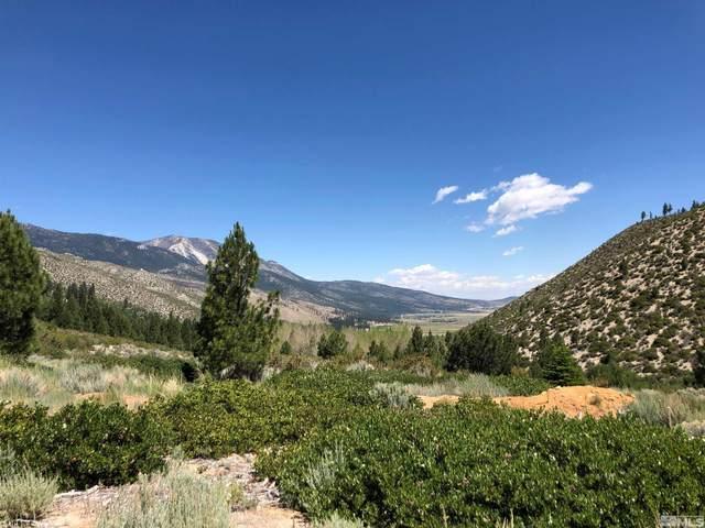 7940 Musgrove Creek, Washoe Valley, NV 89704 (MLS #210012883) :: Colley Goode Group- CG Realty