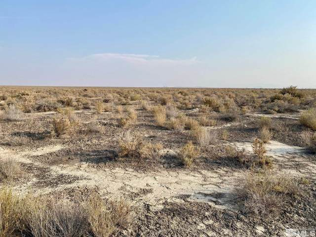07030805 Elevenmile Well Rd, Valmy, NV 89438 (MLS #210012900) :: Chase International Real Estate