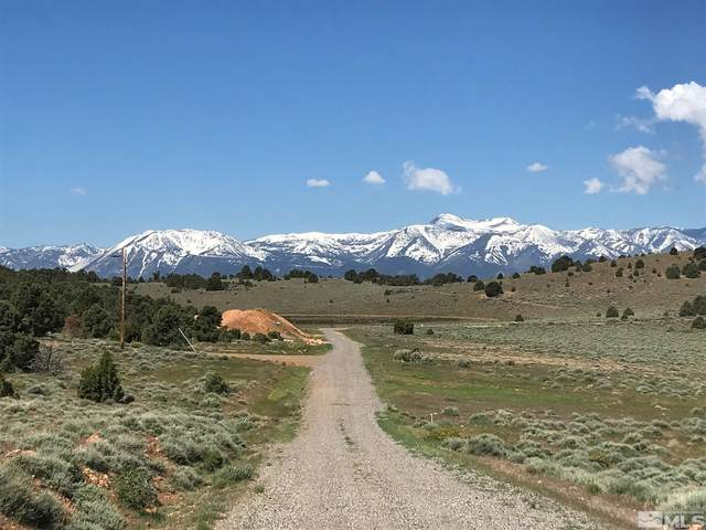 910 Globe Rd, Reno, NV 89521 (MLS #210014000) :: Chase International Real Estate