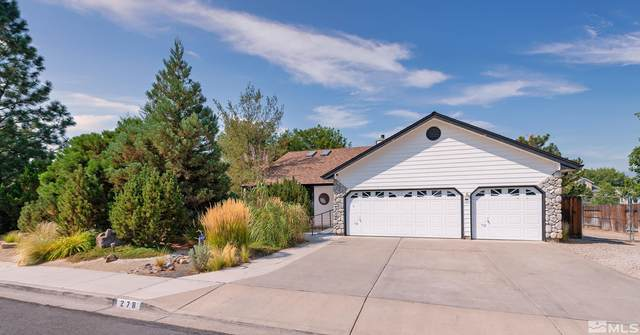 278 Well Way, Carson City, NV 89701 (MLS #210014054) :: Colley Goode Group- CG Realty