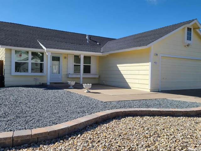 2157 Blossom View, Sparks, NV 89434 (MLS #210014165) :: Colley Goode Group- CG Realty