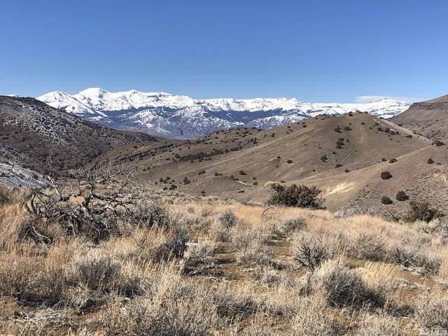 Hays Canyon, Gerlach, NV 89412 (MLS #210014254) :: Morales Hall Group