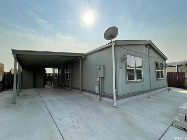 772 Chari Dr, Moundhouse, NV 89706 (MLS #210014313) :: Theresa Nelson Real Estate