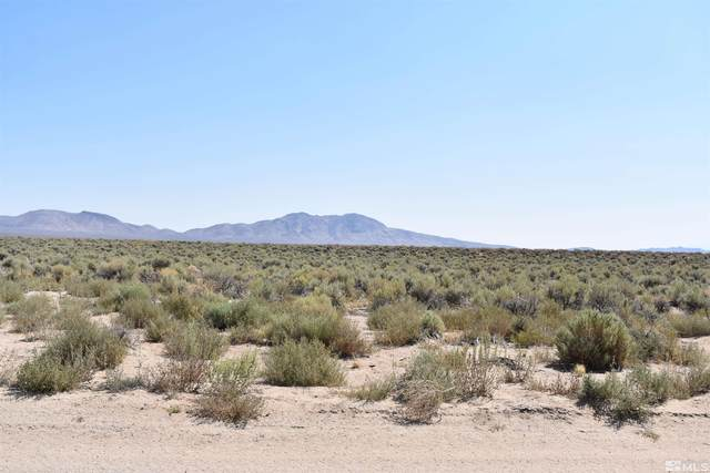 01018114 Jessen Parcel 3, Smith, NV 89444 (MLS #210014584) :: Colley Goode Group- CG Realty