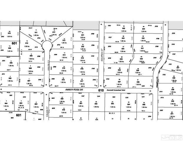 2717 Kaleb, Minden, NV 89423 (MLS #210015019) :: NVGemme Real Estate