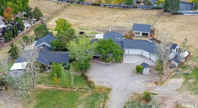 4000 Lone Tree Lane, Reno, NV 89511 (MLS #210015408) :: NVGemme Real Estate