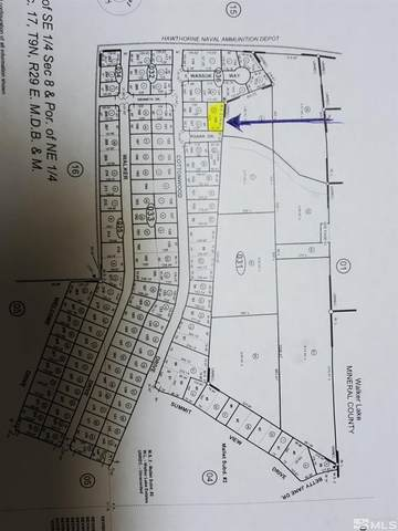 129 Roark Dr, Walker Lake, NV 89415 (MLS #210015806) :: NVGemme Real Estate
