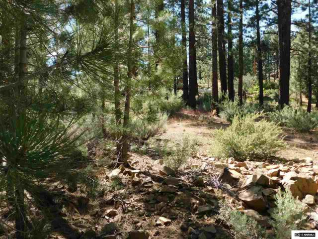 57 Canon View, Markleeville, Ca, CA 96120 (MLS #170008434) :: RE/MAX Realty Affiliates