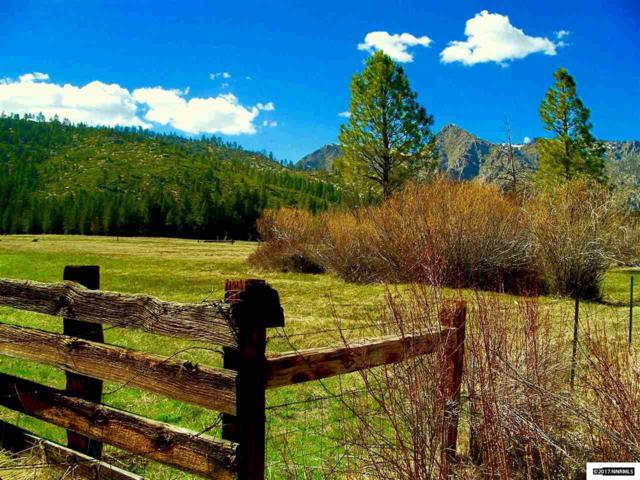 19320 State Route 89, Markleeville, Ca, CA 96120 (MLS #170017484) :: Marshall Realty