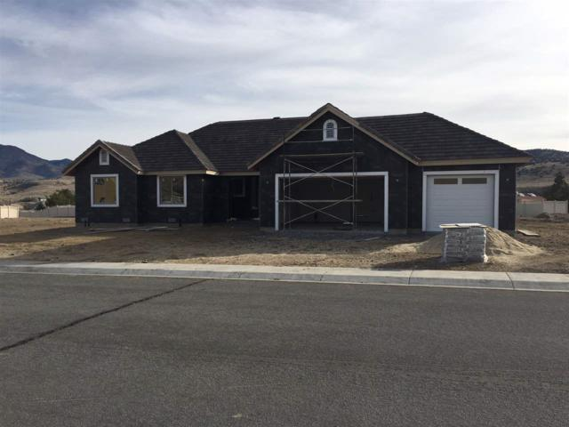 137 Denio Dr, Dayton, NV 89403 (MLS #170017650) :: The Matt Carter Group | RE/MAX Realty Affiliates