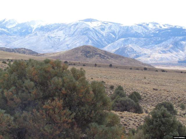 0 Lone Eagle, Topaz, NV 89410 (MLS #180001472) :: The Mike Wood Team
