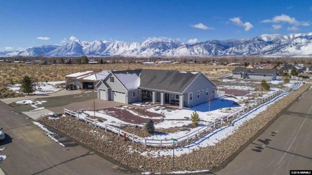 2858 Mac Drive, Minden, NV 89423 (MLS #180002570) :: NVGemme Real Estate