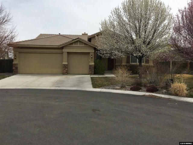 210 Portrush Ct, Dayton, NV 89403 (MLS #180003439) :: Marshall Realty