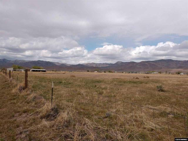 9190 Navajo Trail, Stagecoach, NV 89429 (MLS #180005508) :: NVGemme Real Estate