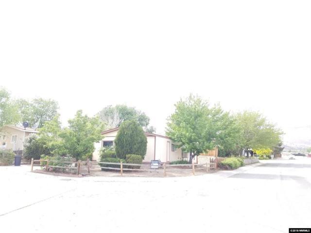 401 Traci Lane, Moundhouse, NV 89706 (MLS #180006281) :: Ferrari-Lund Real Estate