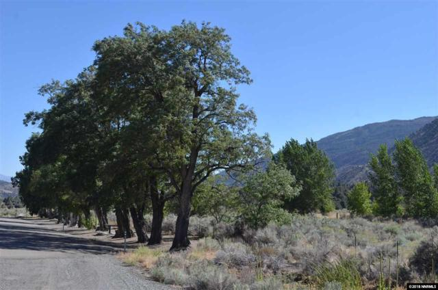 tbd Hwy 395 Westside, Gardnerville, NV 89410 (MLS #180006570) :: NVGemme Real Estate