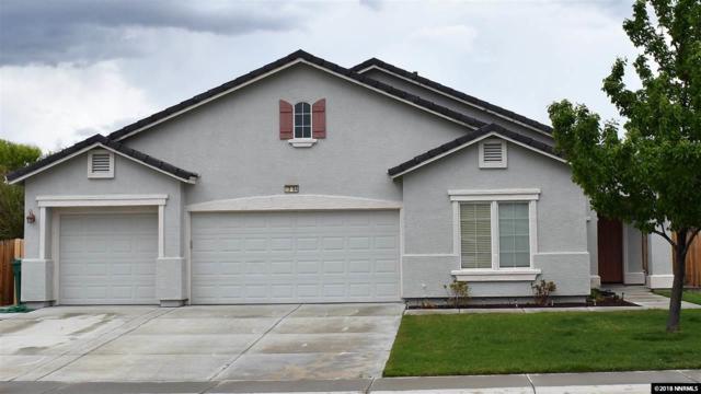 1364 Grassland, Dayton, NV 89403 (MLS #180006639) :: Harpole Homes Nevada