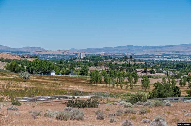 235 Brunswick Mill Road, Reno, NV 89511 (MLS #180009990) :: The Mike Wood Team