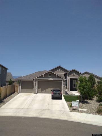 1228 Lasso Lane, Gardnerville, NV 89410 (MLS #180010387) :: NVGemme Real Estate