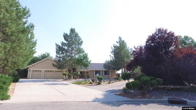 50 Desert Peak Court, Sparks, NV 89441 (MLS #180011530) :: NVGemme Real Estate