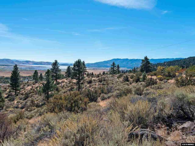 0 Joy Lake Rd, Washoe Valley, NV 89704 (MLS #180014599) :: Joshua Fink Group