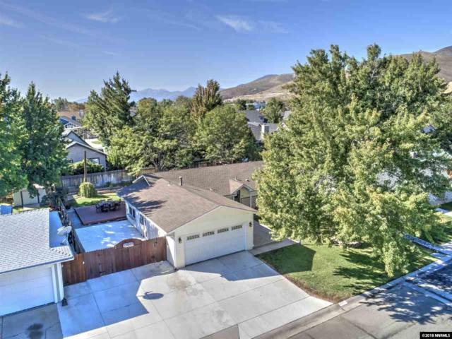 401 Pat Ln., Carson City, NV 89701 (MLS #180014811) :: Harpole Homes Nevada