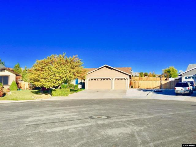 2147 Tanager Ct, Sparks, NV 89441 (MLS #180015542) :: The Mike Wood Team