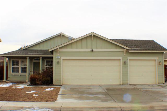 281 Fallen Leaf Ln, Fernley, NV 89408 (MLS #190000356) :: NVGemme Real Estate
