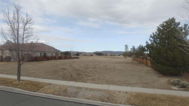 6853 Eagle Wing Circle, Sparks, NV 89436 (MLS #190000486) :: Ferrari-Lund Real Estate