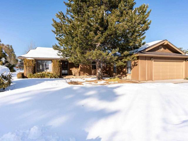 1050 Cabrolet Drive, Carson City, NV 89703 (MLS #190000566) :: Chase International Real Estate