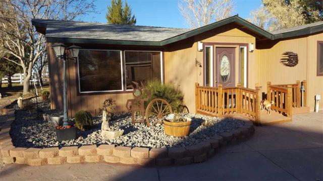 2170 Soda Lake Road, Fallon, NV 89406 (MLS #190000592) :: Chase International Real Estate