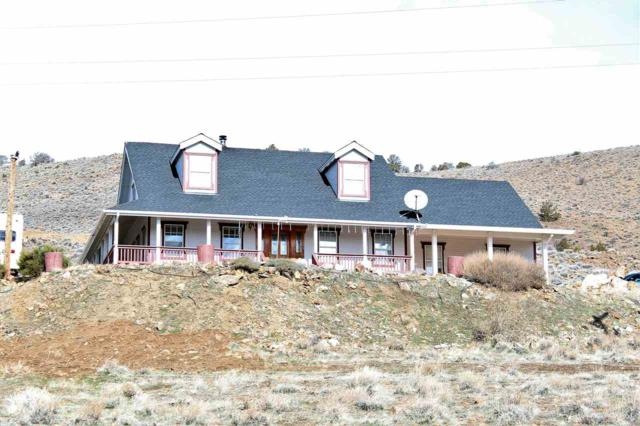 115 State Route 341, Moundhouse, NV 89706 (MLS #190000821) :: Harcourts NV1