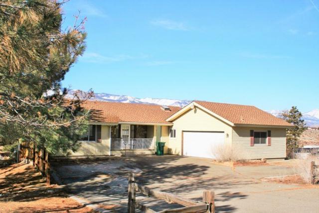 5500 Gentry Lane, Carson City, NV 89701 (MLS #190000970) :: Chase International Real Estate