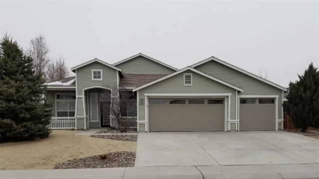1126 Cheatgrass Dr., Dayton, NV 89403 (MLS #190001055) :: Theresa Nelson Real Estate
