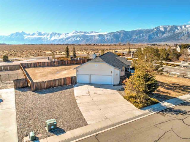 1163 Casa Blanca Ct., Minden, NV 89423 (MLS #190001255) :: Chase International Real Estate