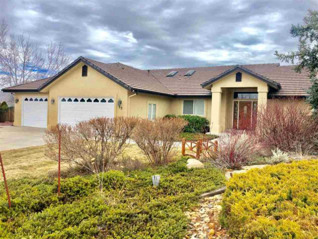 55 Water Lily Court, Reno, NV 89511 (MLS #190001354) :: The Mike Wood Team
