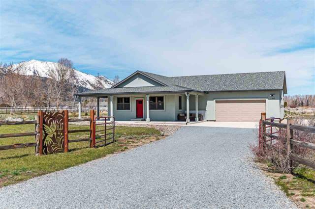 7464 Paloma Linda Way, Washoe Valley, NV 89704 (MLS #190001686) :: Theresa Nelson Real Estate