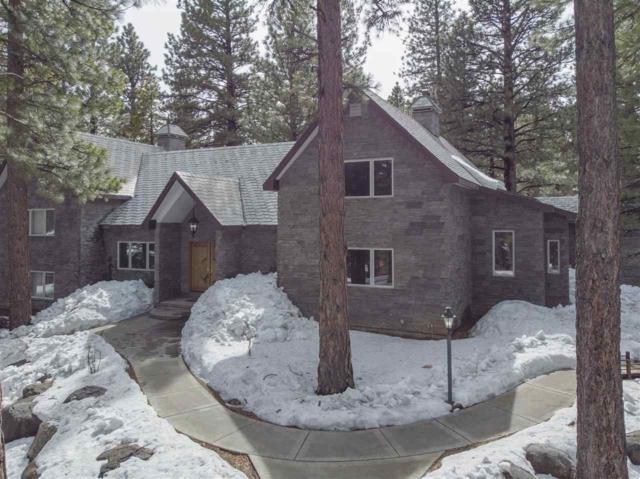 17000 Evergreen Hills Dr, Reno, NV 89511 (MLS #190002384) :: Harcourts NV1