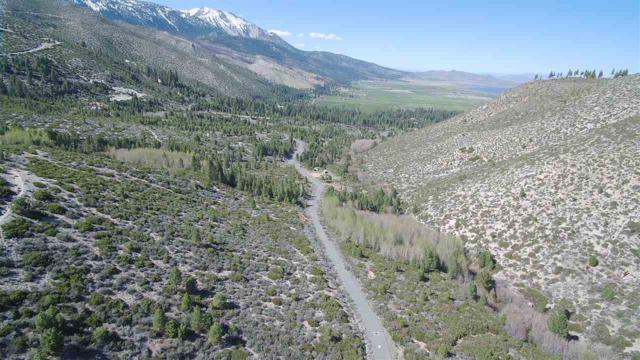 7945 Musgrove Creek, Washoe Valley, NV 89704 (MLS #190003059) :: Vaulet Group Real Estate