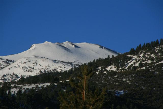 5775 Flowering Sage Trail, Reno, NV 89511 (MLS #190003218) :: Harcourts NV1