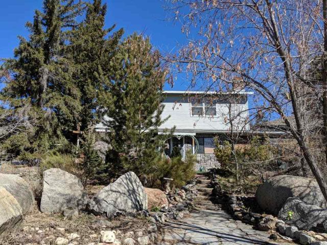 12 Heaven Hill Way, Carson City, NV 89706 (MLS #190003861) :: Joshua Fink Group