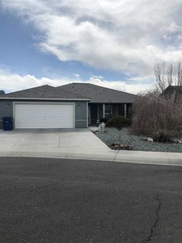 617 Megan Way, Fallon, NV 89406 (MLS #190004147) :: Vaulet Group Real Estate