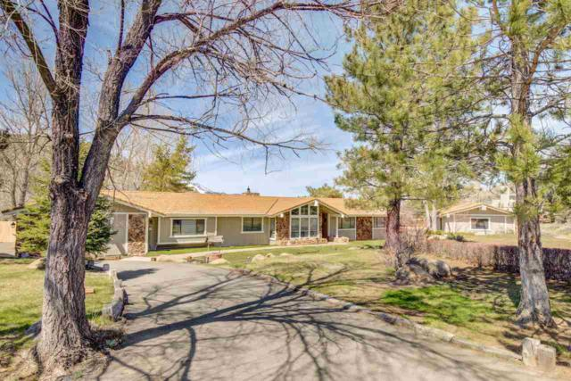 4040 County Line Rd, Carson City, NV 89703 (MLS #190004244) :: Theresa Nelson Real Estate