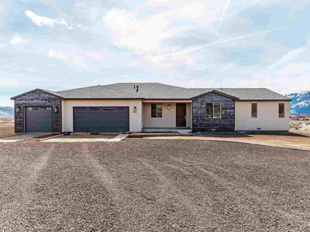 3040 Kauffmann Court, Washoe Valley, NV 89704 (MLS #190004286) :: Vaulet Group Real Estate