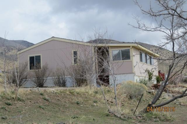 3965 Topaz Ranch Dr, Wellington, NV 89444 (MLS #190004993) :: Marshall Realty