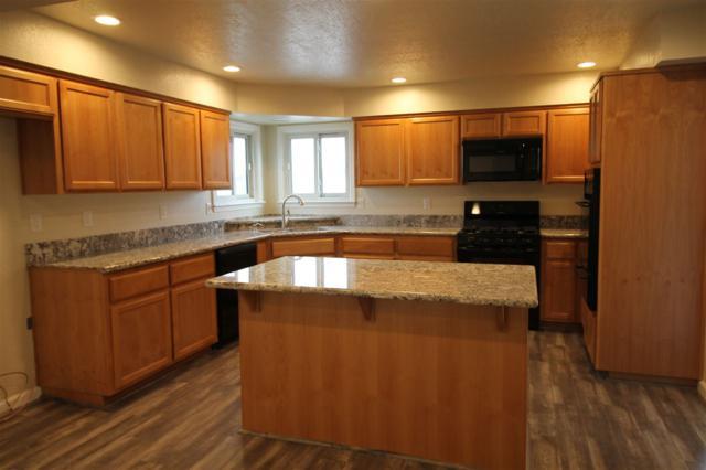 1285 Gummow Drive, Fallon, NV 89406 (MLS #190005018) :: Theresa Nelson Real Estate