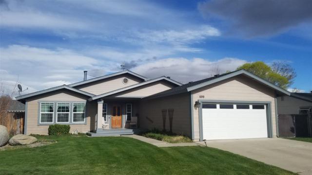 699 Joette Dr, Gardnerville, NV 89460 (MLS #190005424) :: Chase International Real Estate
